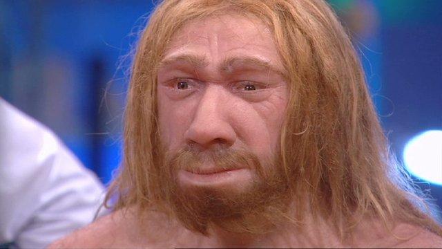 Neanderthal Prop?