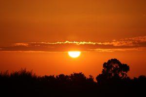 the-evening-sun-1525624